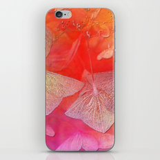 Withered hydrangea iPhone & iPod Skin