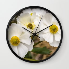 Mount Cook Lily in New Zealand Wall Clock