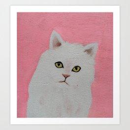 Funny White Cat Art Print