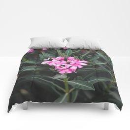Pink Flower Comforters
