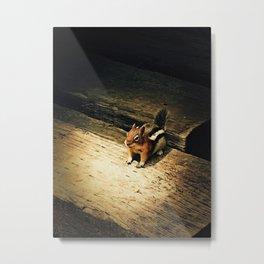 Cute Critter Metal Print