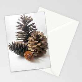 Pinecones still life Stationery Cards