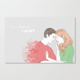 I won't. Canvas Print