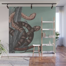 Snakes (animals collection) Wall Mural