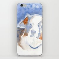 belle iPhone & iPod Skins featuring Belle by KAZUMI