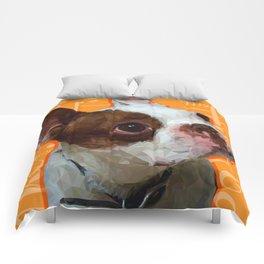 Spanky Comforters