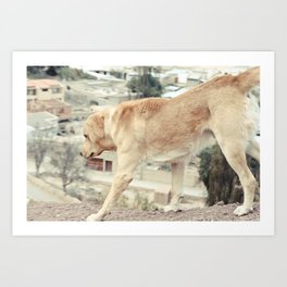 Take a Hike Art Print