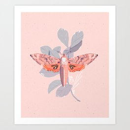 Death's Head Moth Print Art Print