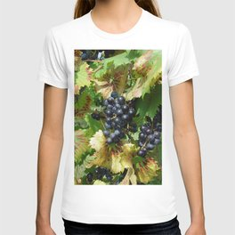 Grapes on a vine T-shirt