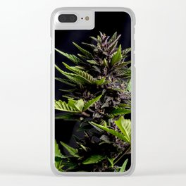 Purple Cannabis Plant Clear iPhone Case