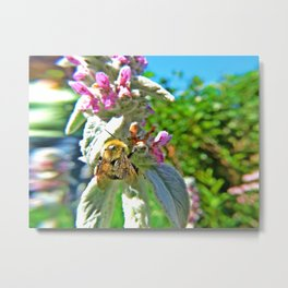 Buzz in Your Ear Metal Print