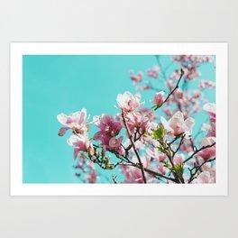Central Park Cherry Blossom Art Print