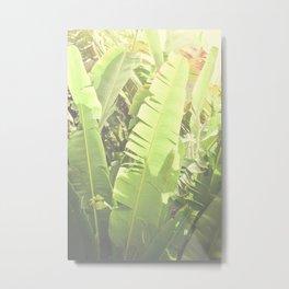 Tropical Banana - Green Metal Print