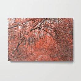 Forest Arch Trail - Salmon Pink Metal Print