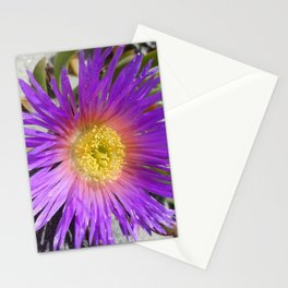 Purple Ice Plant Bloom Stationery Cards