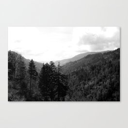 Don't Dig up Old Bones Canvas Print