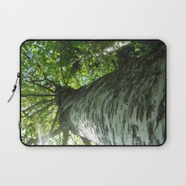 Sacred Birch by Mandy Ramsey, Haines, AK Laptop Sleeve