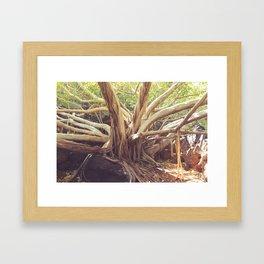 Granny of the forest Framed Art Print
