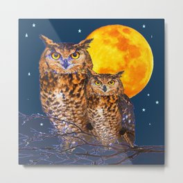 TWO OWLS IN FULL MOONSCAPE NIGHT Metal Print