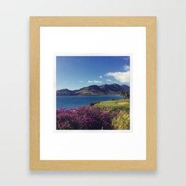 Bougainville  Framed Art Print