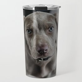 Weimaraner Puppy Looking Up Travel Mug