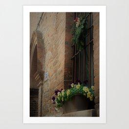 Christmas Window Ferrara Italy Art Print