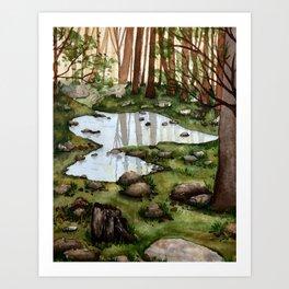 Forest pond Art Print