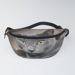 cute gray cat Fanny Pack