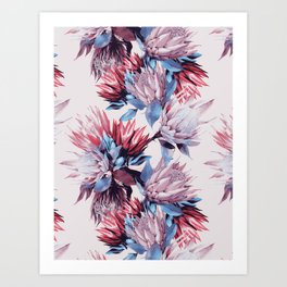 King proteas bloom Art Print