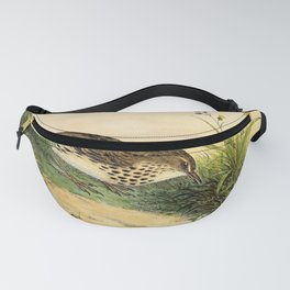 Meadow Pipit, anthus pratensis16 Fanny Pack