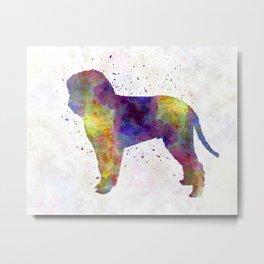 Romagna Water Dog in watercolor Metal Print