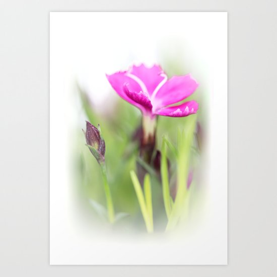Lilac dream... so sweet... Art Print
