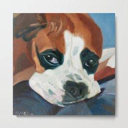 Marley the Boxer Dog Original Portrait Painting Metal Print