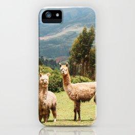 Llama Party iPhone Case