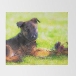 Hollandse herdershond puppy 8 weeks old Throw Blanket