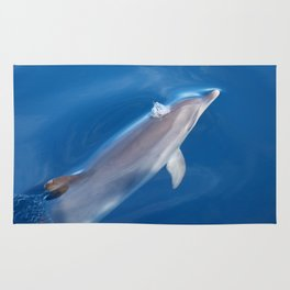 Dolphin and dreams Rug
