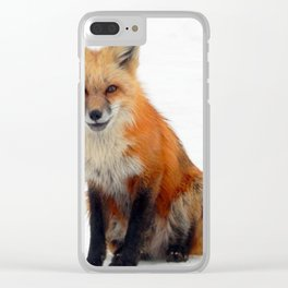Portrait of a fox Clear iPhone Case