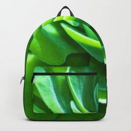 succulent cactus Backpack