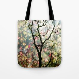 Passing Through, While looking for you Tote Bag