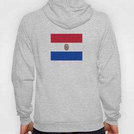 flag of paraguay -paraguyan,asuncion,spanish, south america, latin america,pan flute,coffee,forest Hoody