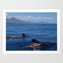 Pilot whales off Tenerife Art Print