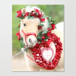 Miniature Horse Valentine Canvas Print