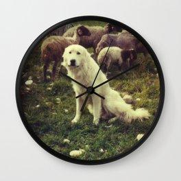 Herding dog, female, south of Israel, scaned sx-70 Polaroid Wall Clock