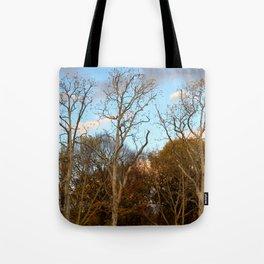 Treptow II Tote Bag