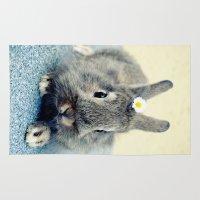 bunny Area & Throw Rugs featuring Bunny by Falko Follert Art-FF77