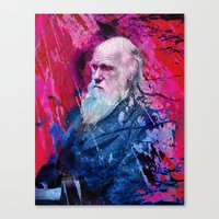 darwin Canvas Prints featuring Darwin by Angelo Lo Presti