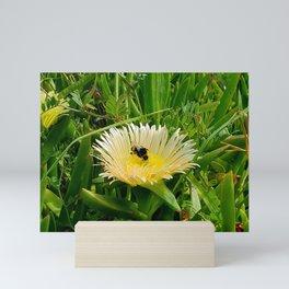 Bumblebee at work. Mini Art Print