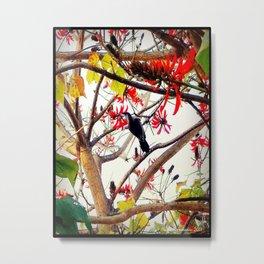 Bird in Coral Tree Metal Print
