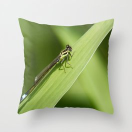 bugging around Throw Pillow