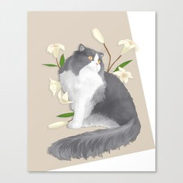 Cat Som Canvas Print
